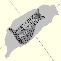 leopard_cat_taiwan2.jpg Télécharger fichier STL gratuit Chat léopard, Taiwan • Objet imprimable en 3D, JustinSDK