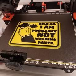Télécharger objet 3D gratuit HOLD ON, I AM PROBABLY NOT WEARING PANTS, panneau de porte, thomasskareteg
