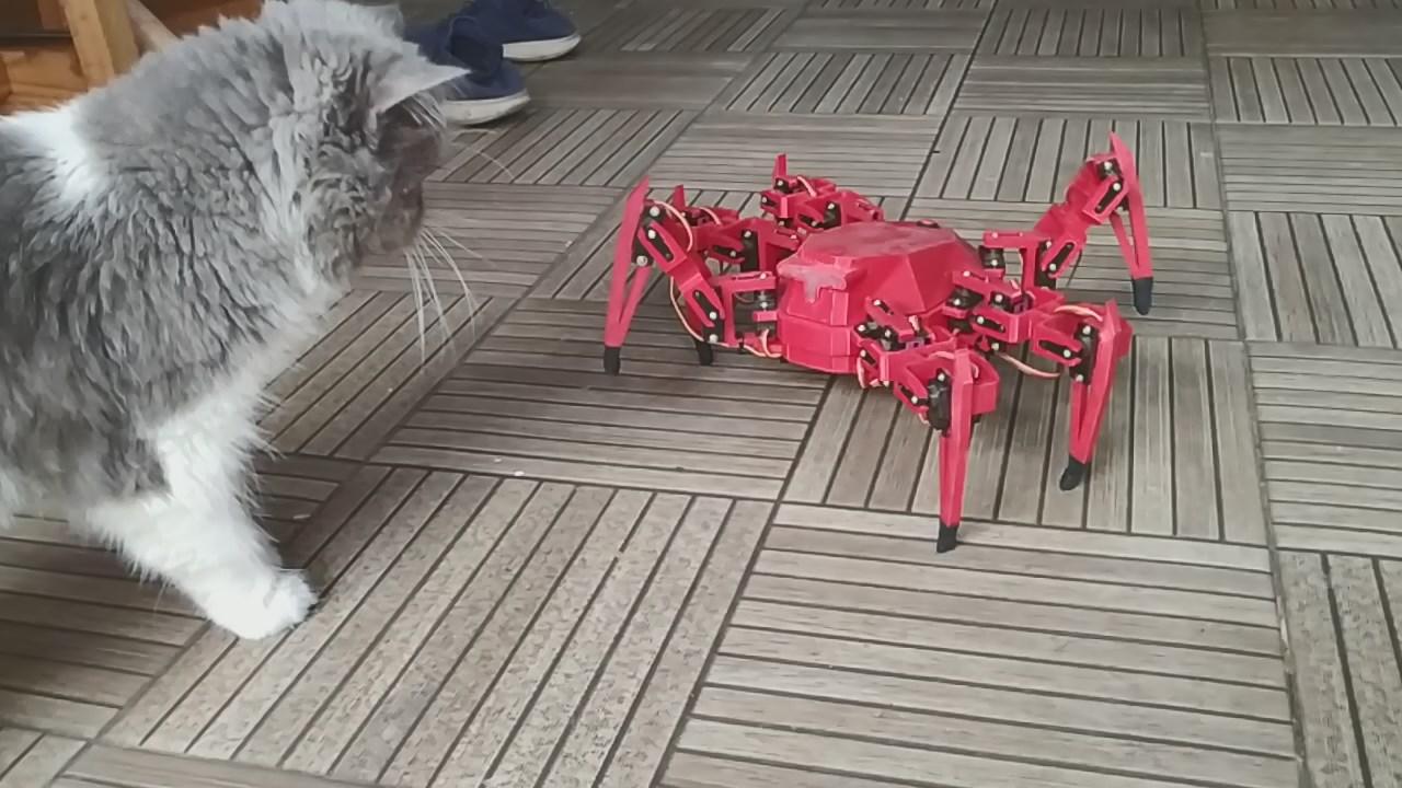 VID_20190810_165848.mp4_snapshot_01.20.982.jpg Télécharger fichier STL gratuit Robot hexagonal V1 • Design pour impression 3D, mwilmars