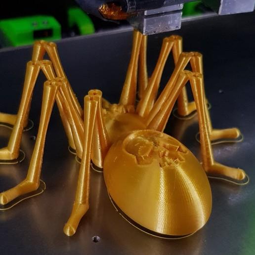 20191005_235010.jpg Télécharger fichier STL gratuit Skully the spider • Objet pour impression 3D, Designandmore3D