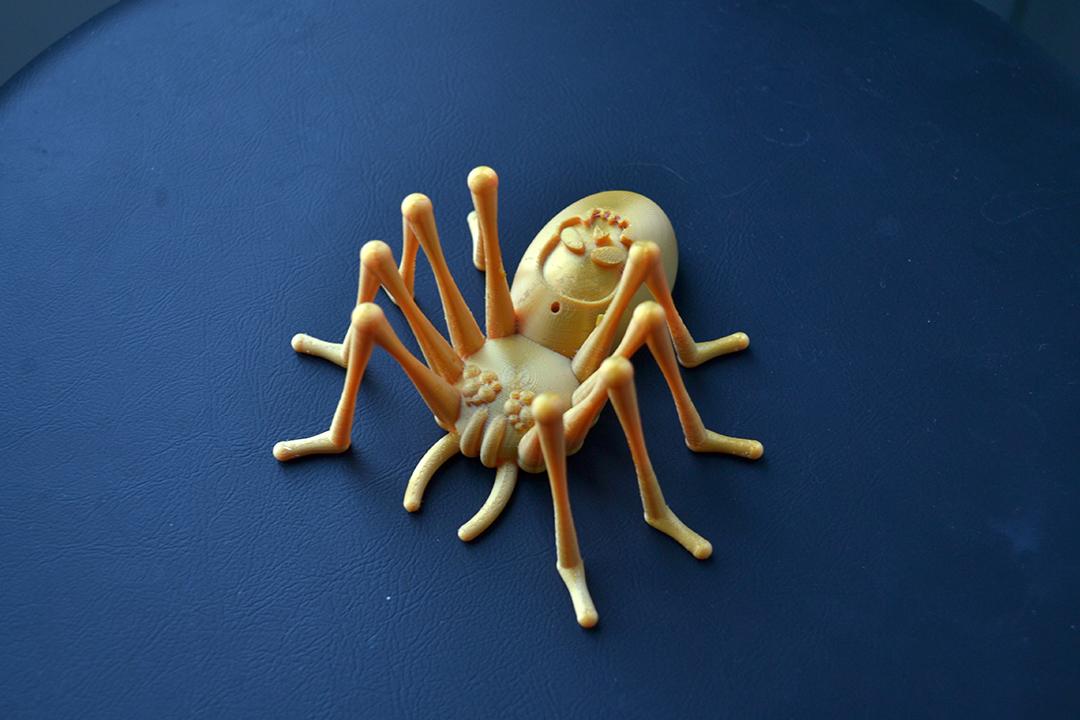 DSC_3210.JPG Télécharger fichier STL gratuit Skully the spider • Objet pour impression 3D, Designandmore3D