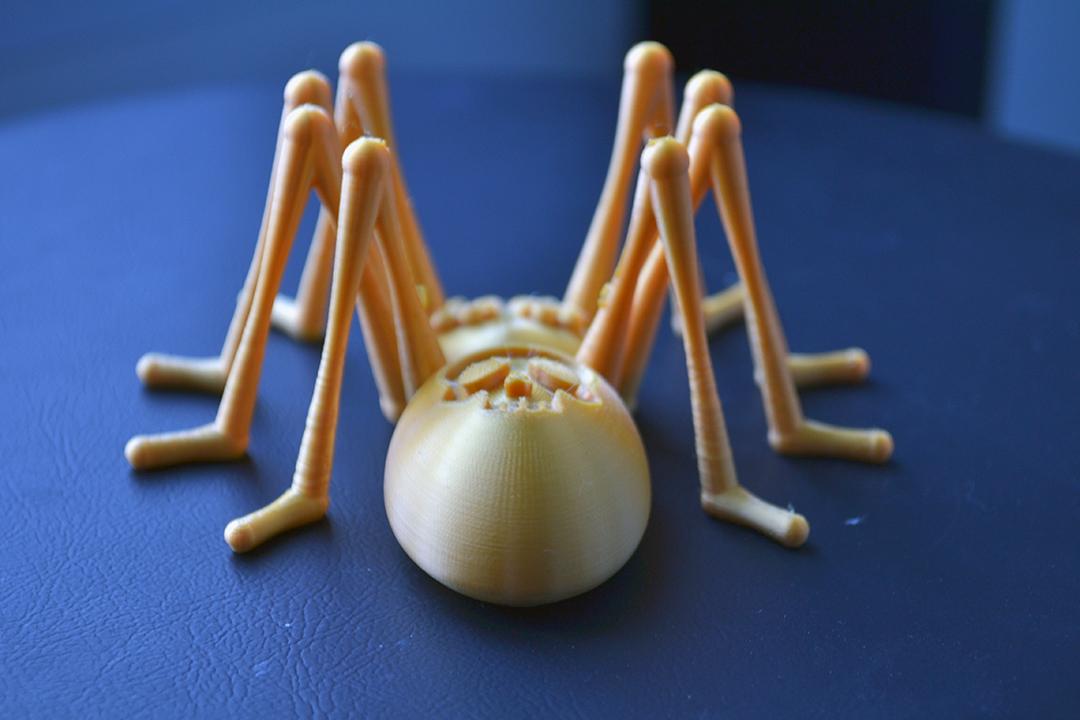 DSC_3211.JPG Télécharger fichier STL gratuit Skully the spider • Objet pour impression 3D, Designandmore3D