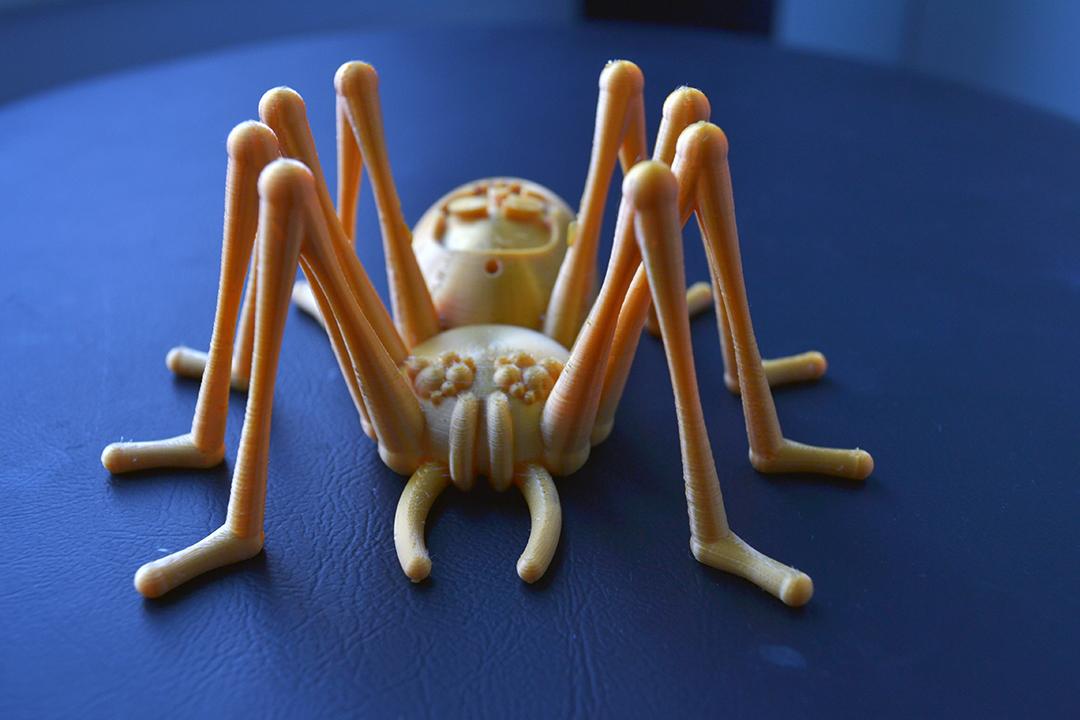 DSC_3214.JPG Télécharger fichier STL gratuit Skully the spider • Objet pour impression 3D, Designandmore3D