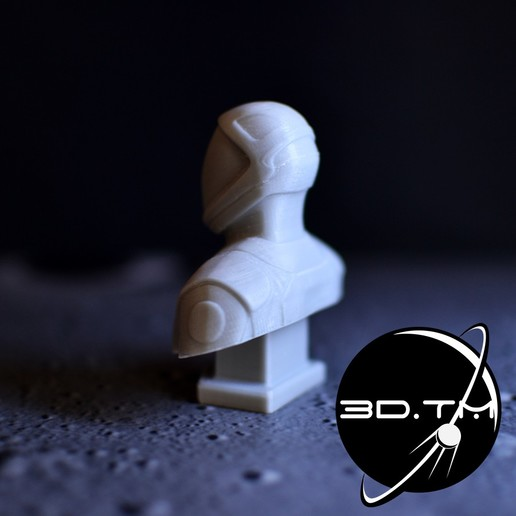 bust_00004.jpg Descargar archivo STL Busto de Hombre Estelar - Busto de la tripulación de SpaceX • Modelo para la impresora 3D, tmatosc
