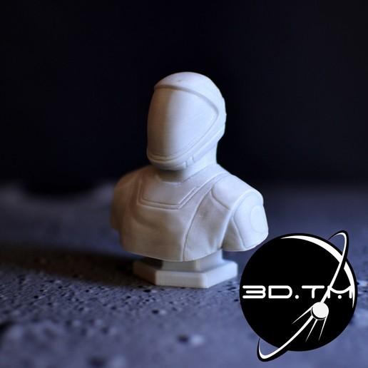 bust_00005.jpg Télécharger fichier STL Buste de Starman - Buste de l'équipage de SpaceX • Modèle à imprimer en 3D, tmatosc