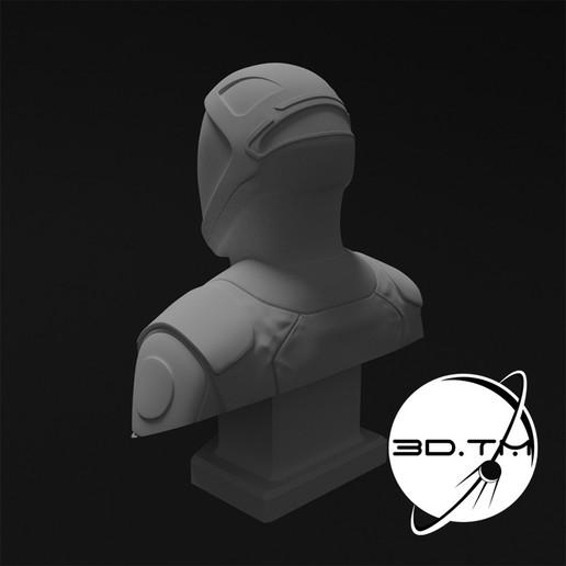 bust_0011.jpg Descargar archivo STL Busto de Hombre Estelar - Busto de la tripulación de SpaceX • Modelo para la impresora 3D, tmatosc