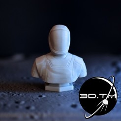 bust_00001.jpg Download STL file Starman Bust - SpaceX Crew Bust • 3D print model, tmatosc