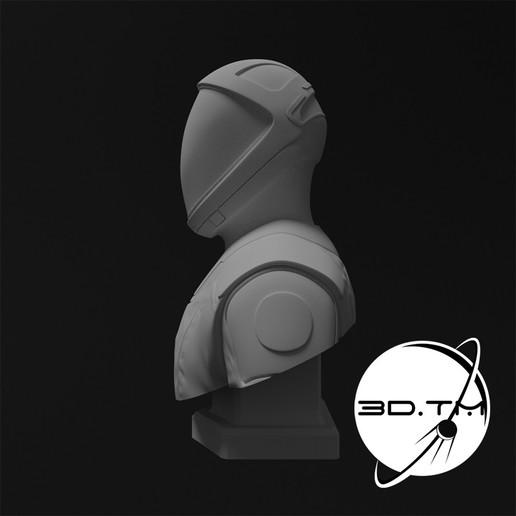 bust_0010.jpg Descargar archivo STL Busto de Hombre Estelar - Busto de la tripulación de SpaceX • Modelo para la impresora 3D, tmatosc