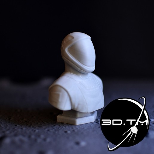 bust_00002.jpg Descargar archivo STL Busto de Hombre Estelar - Busto de la tripulación de SpaceX • Modelo para la impresora 3D, tmatosc