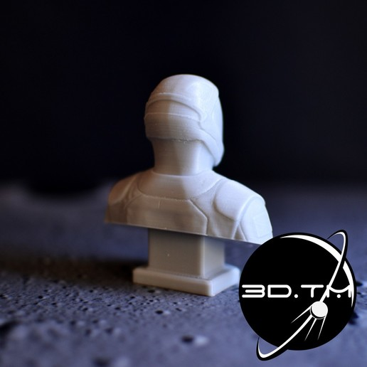 bust_00003.jpg Descargar archivo STL Busto de Hombre Estelar - Busto de la tripulación de SpaceX • Modelo para la impresora 3D, tmatosc