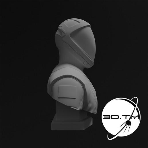 bust_0009.jpg Descargar archivo STL Busto de Hombre Estelar - Busto de la tripulación de SpaceX • Modelo para la impresora 3D, tmatosc