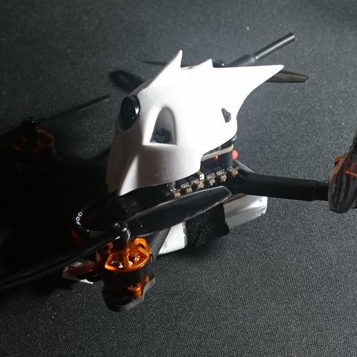 _20200313_085907.JPG Télécharger fichier STL TYRO69 - LÉZARD MORT • Design pour imprimante 3D, bopiloot