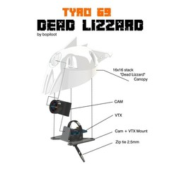 Download 3D model TYRO69 - DEAD LIZZARD, bopiloot