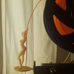 Download 3D printer templates Filament guide pole dance, wowo3D