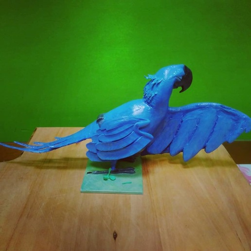 WhatsApp Image 2020-06-10 at 2.11.10 PM (2).jpeg Download free OBJ file Pearl and Blu from RIO • 3D printer object, pipemontoya1999
