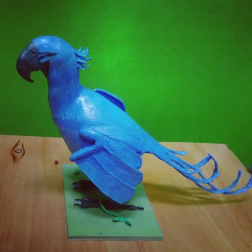 WhatsApp Image 2020-06-10 at 2.11.10 PM (1).jpeg Download free OBJ file Pearl and Blu from RIO • 3D printer object, pipemontoya1999
