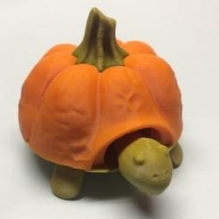 Descargar diseños 3D gratis Camiseta Pumkin para Squishy Turtle, Dimson82