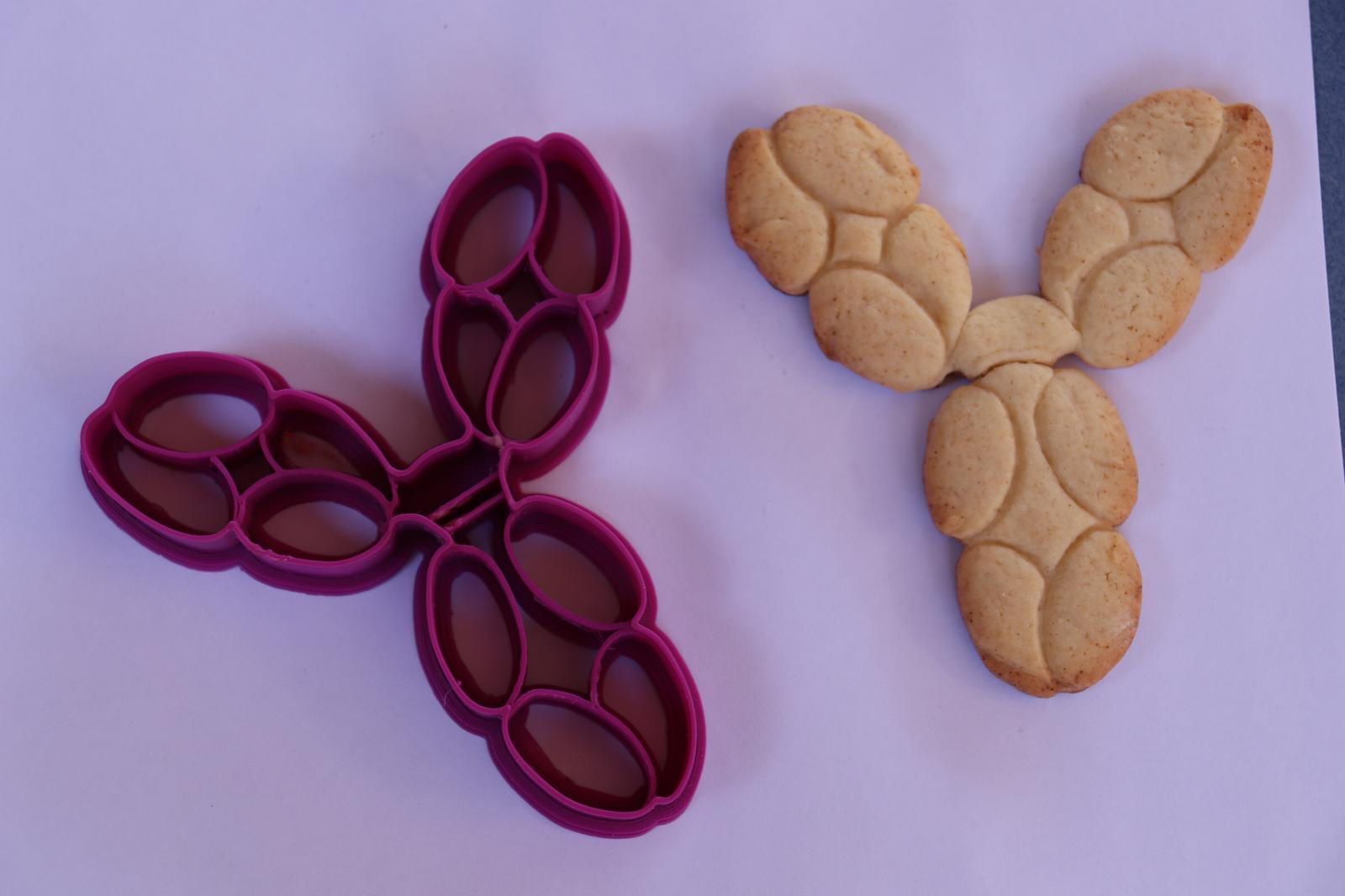 IgG.jpg Télécharger fichier STL gratuit Coupe-biscuits IgG pour anticorps • Objet à imprimer en 3D, Ragkov
