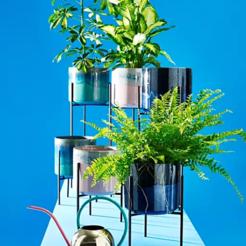Télécharger STL Pot et support pour plantes, SimonTGriffiths
