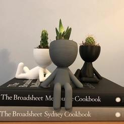 Descargar archivo 3D flower pot,maceta robert, plantpot, planter , faqezequiel