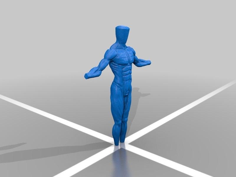 c0ab8f1182027c43c89543894b761bde.png Télécharger fichier STL gratuit Anatomie masculine • Objet à imprimer en 3D, Shinokez