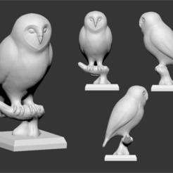 Descargar modelos 3D owl , ludw2212