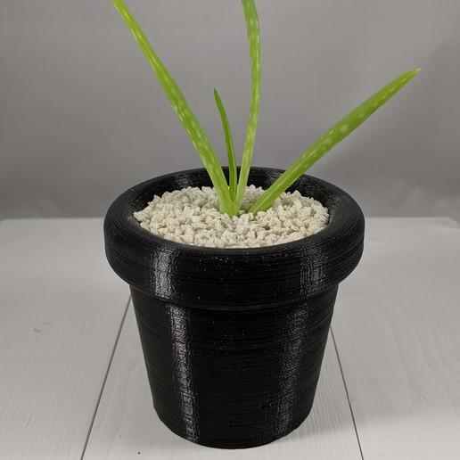 Download free STL file Small Succulent Planter, MikeFiveTango