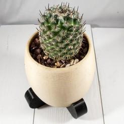 Télécharger plan imprimante 3D gatuit Jardinière de désert moderne, MikeFiveTango