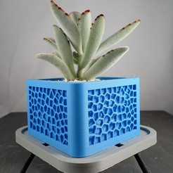 voronoi_planter2.jpg Télécharger fichier STL gratuit Voronoi Planter • Modèle imprimable en 3D, MikeFiveTango