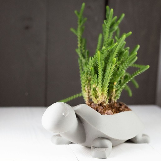 Télécharger fichier impression 3D gratuit Planteur de tortue, MikeFiveTango