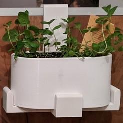 Télécharger fichier STL gratuit pot de fleurs herbes de cuisine / Blumentopf Küchenkräuter • Design imprimable en 3D, -mario-