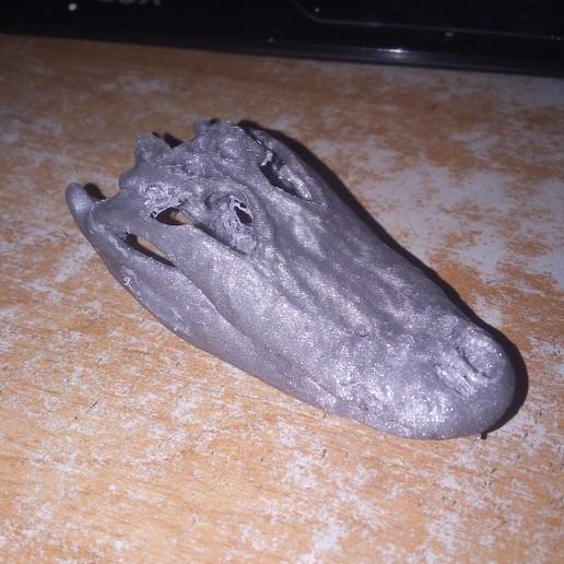 IMG_20190930_094800.jpg Télécharger fichier STL gratuit Gator l'alligator - tomodensitométrie • Objet imprimable en 3D, Valchanov