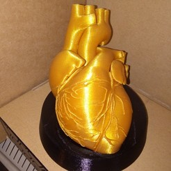 Download free STL file The golden heart • 3D printable object, Valchanov