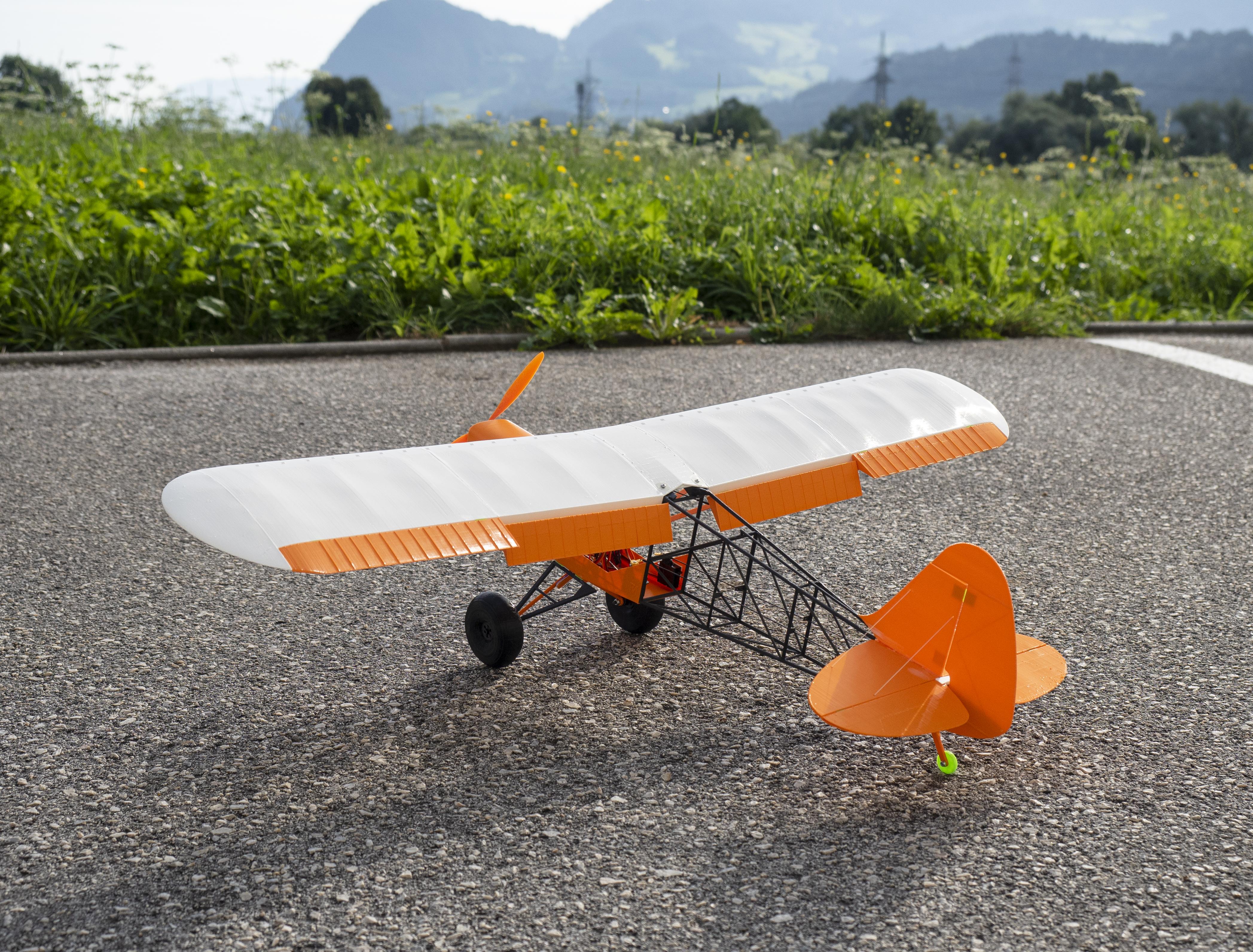 p8150391.jpg Download free STL file 3D rc plane savage bobber • Object to 3D print, ederhannes
