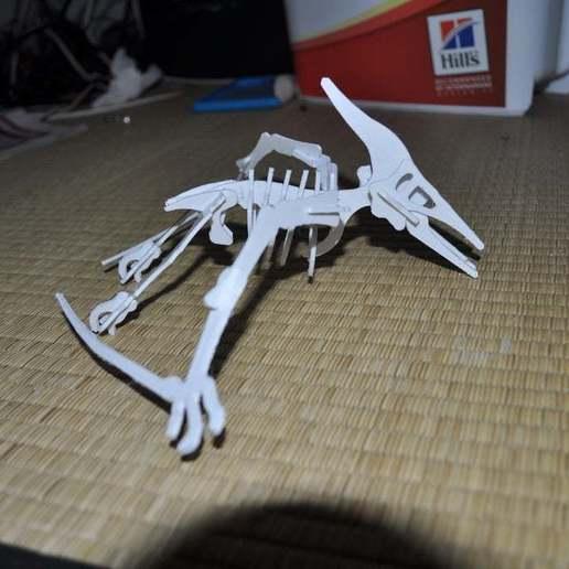 Télécharger fichier STL gratuit Pterodactilus 3D puzzle, dino • Plan imprimable en 3D, Mendelssohn