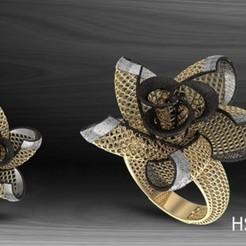 HSFZ-A034.jpg Télécharger fichier STL Bague Nokta03 • Design pour impression 3D, Mansuri