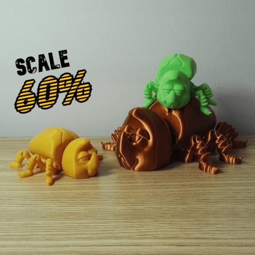 FLEXI BEETLE 5.png Télécharger fichier STL gratuit SCARABÉE FLEXI • Design pour imprimante 3D, kendofuji