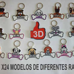 IDENTIFICADORES DE MASCOTAS.png Download STL file Set x24 Dog tags ( work from home) • 3D printing template, 3dokinfo