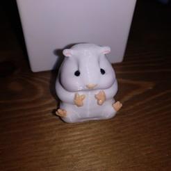 Download free 3D printing designs Cheeky Hamster, greisymarsh