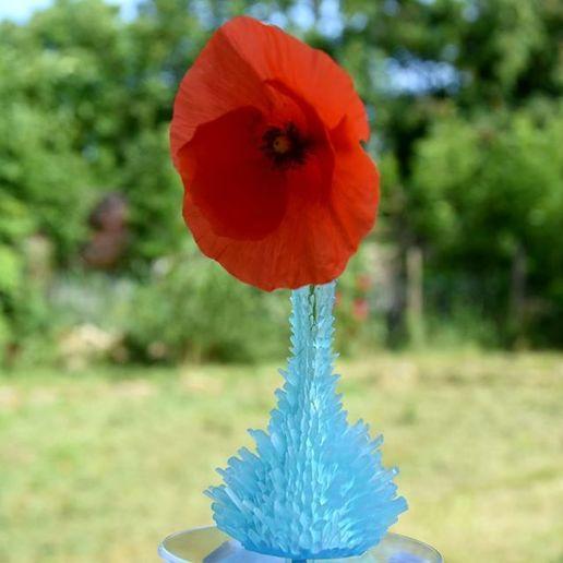 Download free 3D printer templates Crystallized Vase, DrFemPop