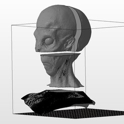 Download free 3D print files Detailed alien head splited to fit the bed, pparsniak