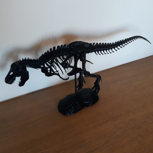 Download free 3D printing designs T-Rex Skeleton, NicoTheEdge