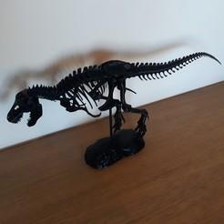 Descargar modelo 3D gratis Esqueleto de T-Rex, NicoTheEdge
