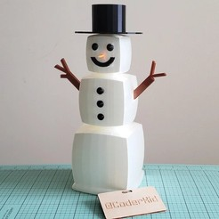 blocky-the-snowman-photo-1.jpg Download free OBJ file Blocky the Snowman • 3D printer object, Coderkid