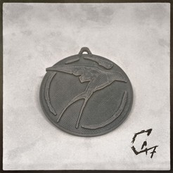 Download free 3D printer model Witcher Series Medallion - Swallow, c47