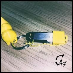 USB cap.jpg Télécharger fichier STL gratuit Capsule USB simple • Modèle pour imprimante 3D, c47