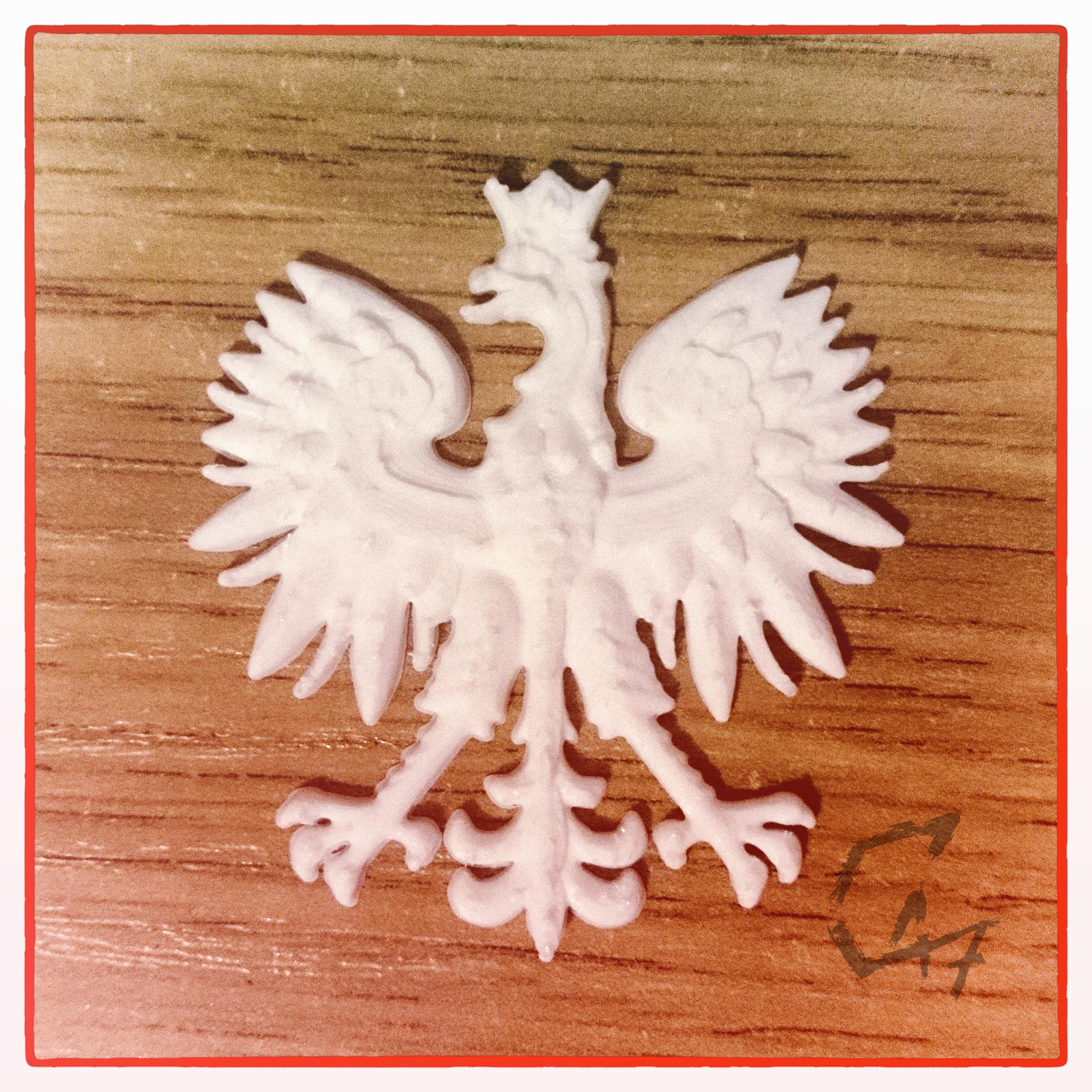 IMG_20190503_123942.jpg Download free STL file Erne ('Eagle') - Polish Emblem • 3D printer model, c47