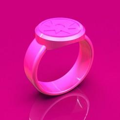 rosa.24.jpg Télécharger fichier 3DS Lanterne rose • Modèle imprimable en 3D, DINGLOB
