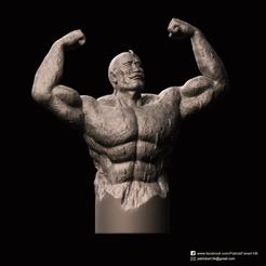 Alex Louis Armstrong_2.png Télécharger fichier STL gratuit Alex Louis Armstrong(Alchimiste Fullmetal) • Objet pour imprimante 3D, PatrickFanart