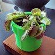 Download free 3D printer designs Venus Fly Trap Planter (self watering), Superbeasti